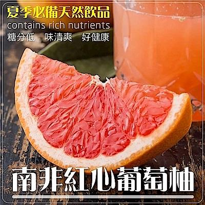 【天天果園】南非葡萄柚X10顆(每顆約250g)