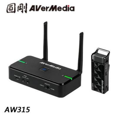 圓剛 AW315 教學專用無線麥克風(單麥克風組)