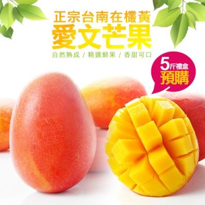 鮮採味 正宗在欉黃台南南化玉井愛文芒果 5斤禮盒(8箱)
