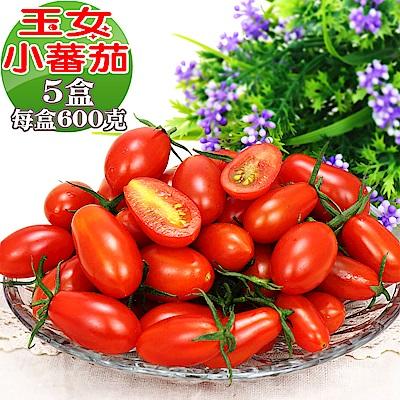 愛蜜果 溫室玉女小番茄5盒(600克/盒)