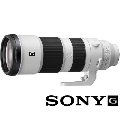 SONY FE 200-600mm F5.6-6.3 G OSS SEL200600G (公司貨) 超望遠變焦鏡頭 全片幅 E接環 飛羽攝影