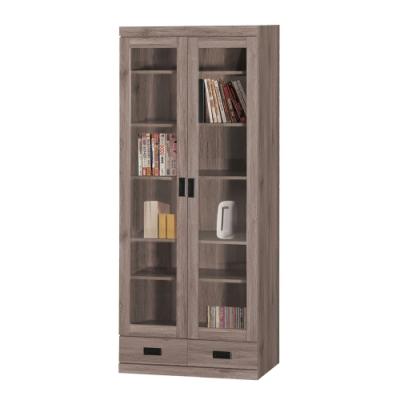 綠活居 菲迪現代風2.7尺二門二抽書櫃/收納櫃-80.5x38.5x199cm免組