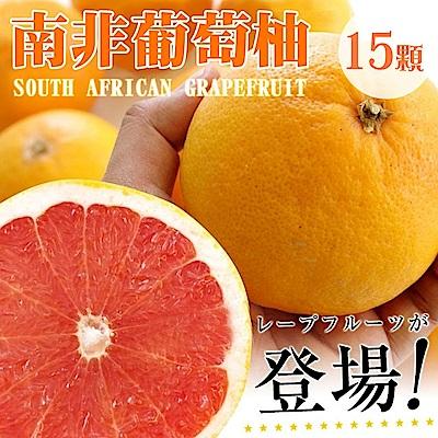 【天天果園】南非紅葡萄柚(每顆270g) x15顆