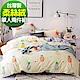 9 Design 清新鳳梨 柔絲絨磨毛 單人枕套床包兩件組 台灣製 product thumbnail 1