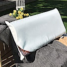 戀家小舖 / 枕頭  物理性涼感記憶枕-兩入組  水性塗布添加涼感粉末  台灣製