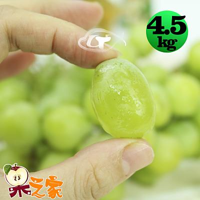 果之家 特選A級空運鮮嫩綠無籽葡萄1箱(4.5kg/箱)