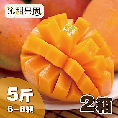 沁甜果園SSN 台南愛文芒果6-8粒裝/5台斤/箱,(共2箱)