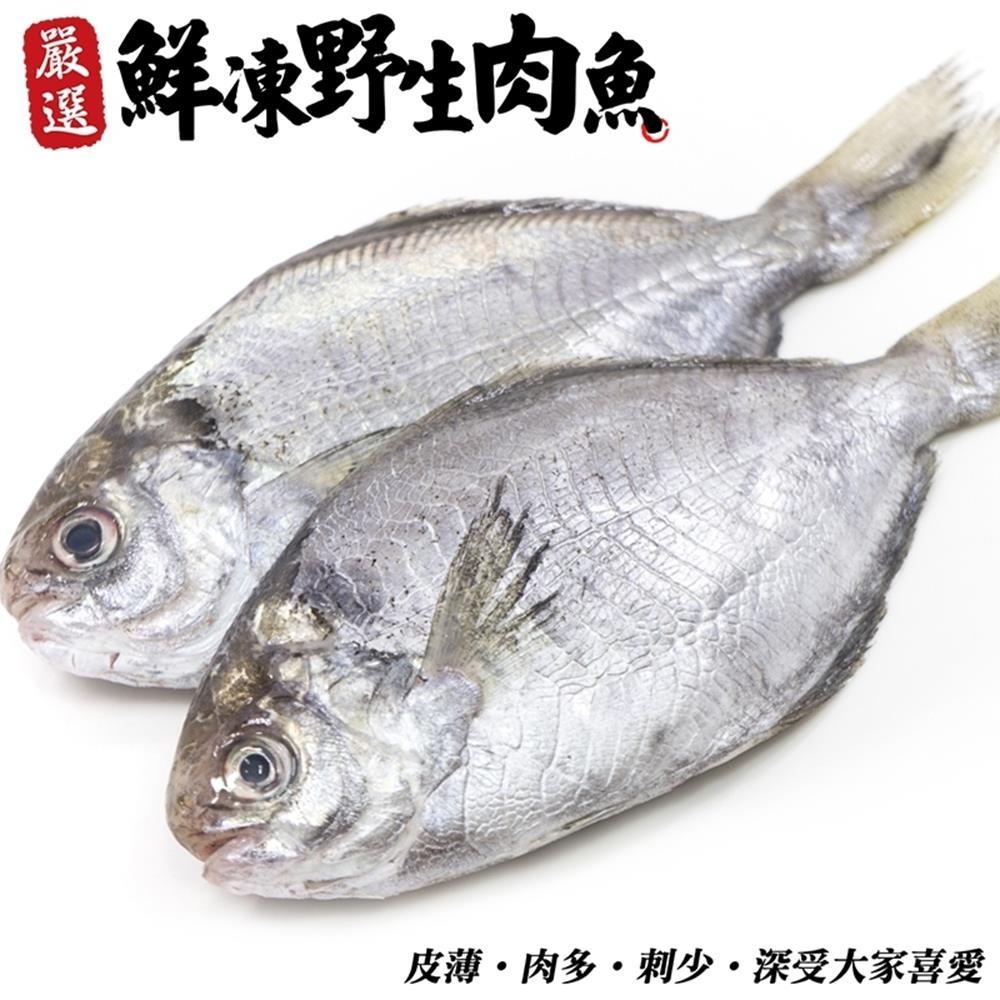 (滿699免運)【海陸管家】新鮮野生肉魚/肉鯽仔2尾(每尾約100g)