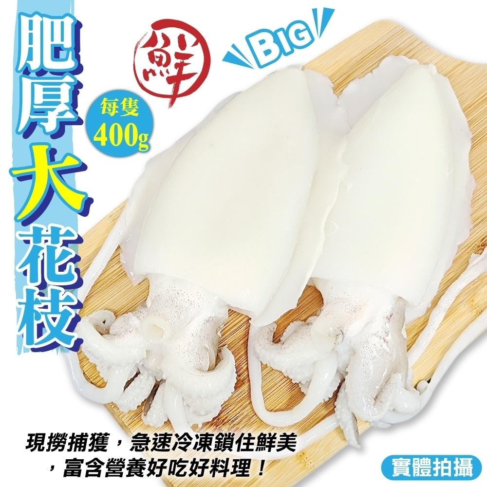 (滿699免運)【海陸管家】特級鮮Q甜肥厚大花枝1隻(每隻約400g)