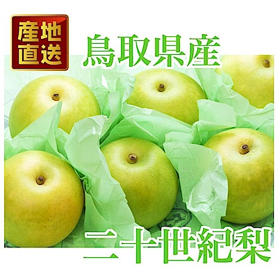 【天天果園】日本室外鳥取二十世紀梨 x5kg (約10-12入)