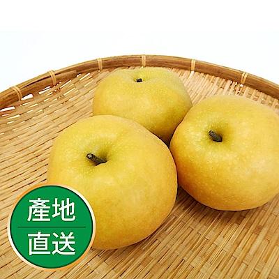 【果物配】新興梨.產銷履歷(4kg/8顆入)