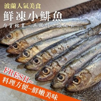 顧三頓-波蘭指定美食-鮮凍小鯡魚x5包(每包45-50尾約500g±10%)