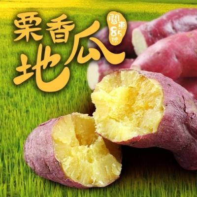 愛上美味 特A級日本栗香地瓜1包