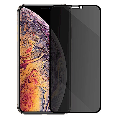 Metal-Slim Apple iPhone Xs/X 防窺滿版9H鋼化玻璃貼