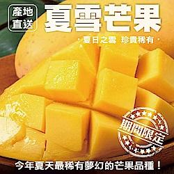【天天果園】嚴選屏東夏雪芒果 x10台斤 (約9-11顆)
