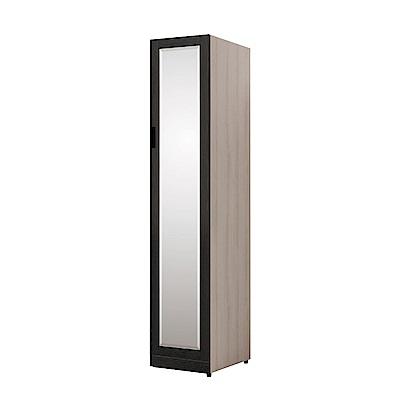 文創集 艾咪時尚1.3尺鏡面衣櫃/收納櫃(吊衣桿+穿衣鏡)-40x59x202cm免組