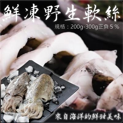 【鮮海漁村】野生特級軟絲12隻(每隻約240g)