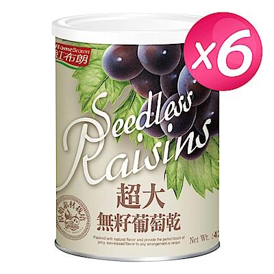 紅布朗 超大無籽葡萄乾(420g/罐)x6罐