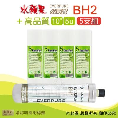 【水蘋果】高品質10英吋5微米PP濾心+水蘋果公司貨BH2濾心(5支組)