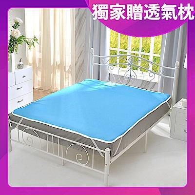 (限時下殺)Grace Life台灣製 6D透氣止滑涼墊-加碼贈~6D透氣枕墊一對
