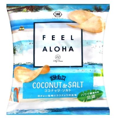 湖池屋 椰子鹽味薯片(65g)