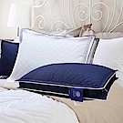 Hilton 希爾頓 VIP貴賓 純棉立體銀離子抑菌獨立筒枕 1入