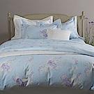 VENEZIA| Verona維洛納 (粉藍) | 進口精梳棉 印花寢飾 加大