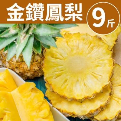 [甜露露] 台灣金鑽鳳梨1箱9斤(6-9入)