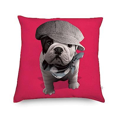 法國數位藝廊 狗狗抱枕/靠墊-紳士毛帽(紅)-含芯40x40