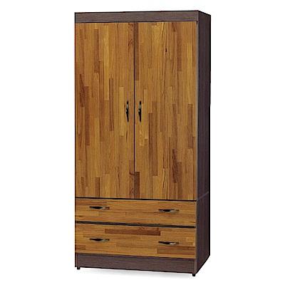 綠活居 拉雷斯2.7尺雙色二抽衣櫃/收納櫃(二色)-82x56x176cm-免組