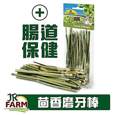 德國JR FARM-茴香棒15g/小動物磨牙棒/腸道保健/適合寵物鼠、兔、鳥-20454