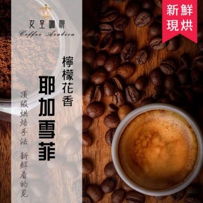 【女皇咖啡】耶加雪菲 檸檬花香咖啡 現烘咖啡豆(中深焙 一磅入 454g)