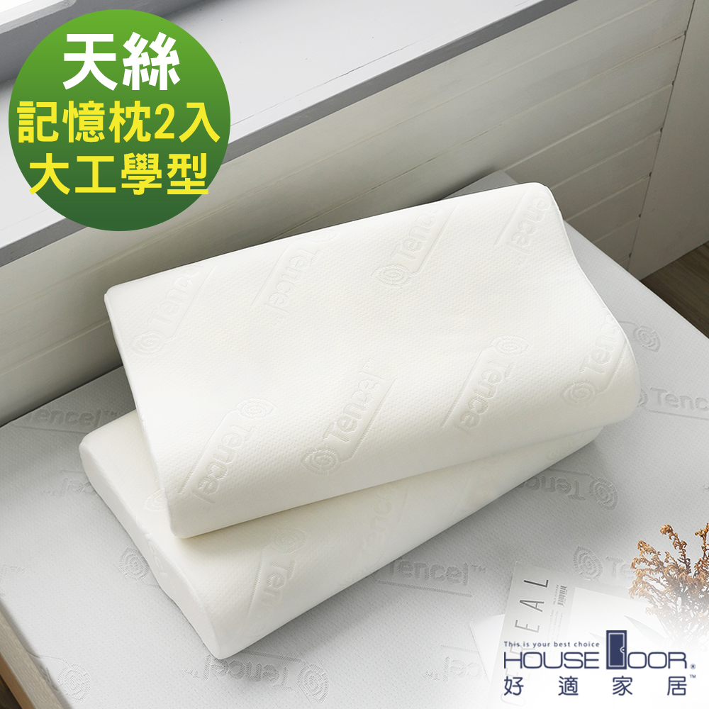 House Door 歐美熱銷款 天絲舒柔表布 工學型釋壓記憶枕-大尺寸2入