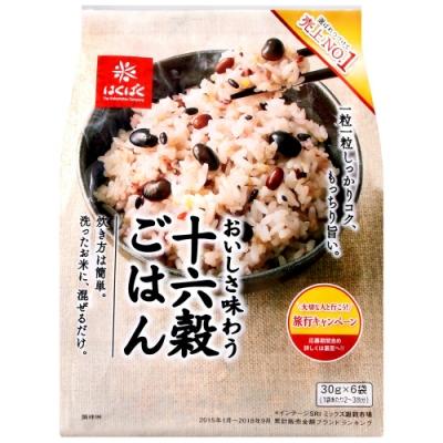 Hakubaku 名撰黑豆十六穀(180g)