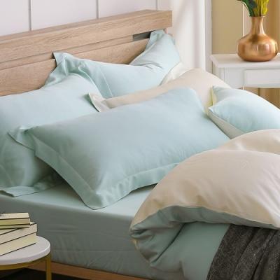 鴻宇 天絲枕套2入 天絲300織 歐式壓框枕套 最好的里爾克 台灣製