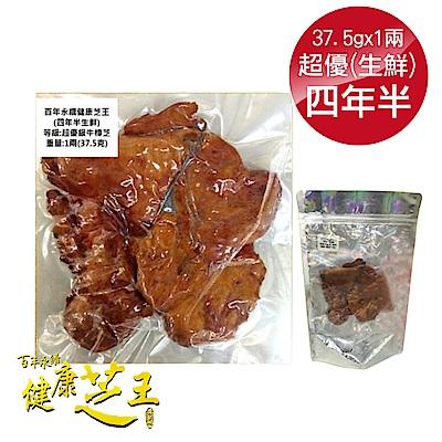 百年永續健康芝王 (四年半) 牛樟芝 生鮮品 37.5g x1兩