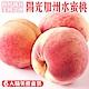 【天天果園】美國空運水蜜桃6入禮盒(每顆約220g) product thumbnail 1