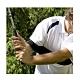 【LOTUS】高爾夫揮桿動作糾正帶 固定手臂 product thumbnail 1
