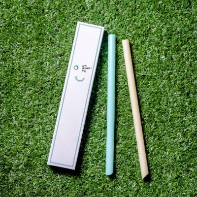 HYPASS 卡卡環保吸管GAGA STRAW 綠盒2入獨享版(綠+黃)