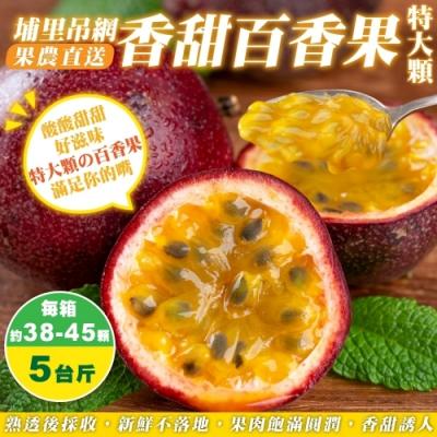 【果農直配】埔里吊網香甜百香果(大顆)5斤(約38-45顆)