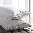 BBL Premium 飯店款100%天然水鳥羽毛側立枕(一對)
