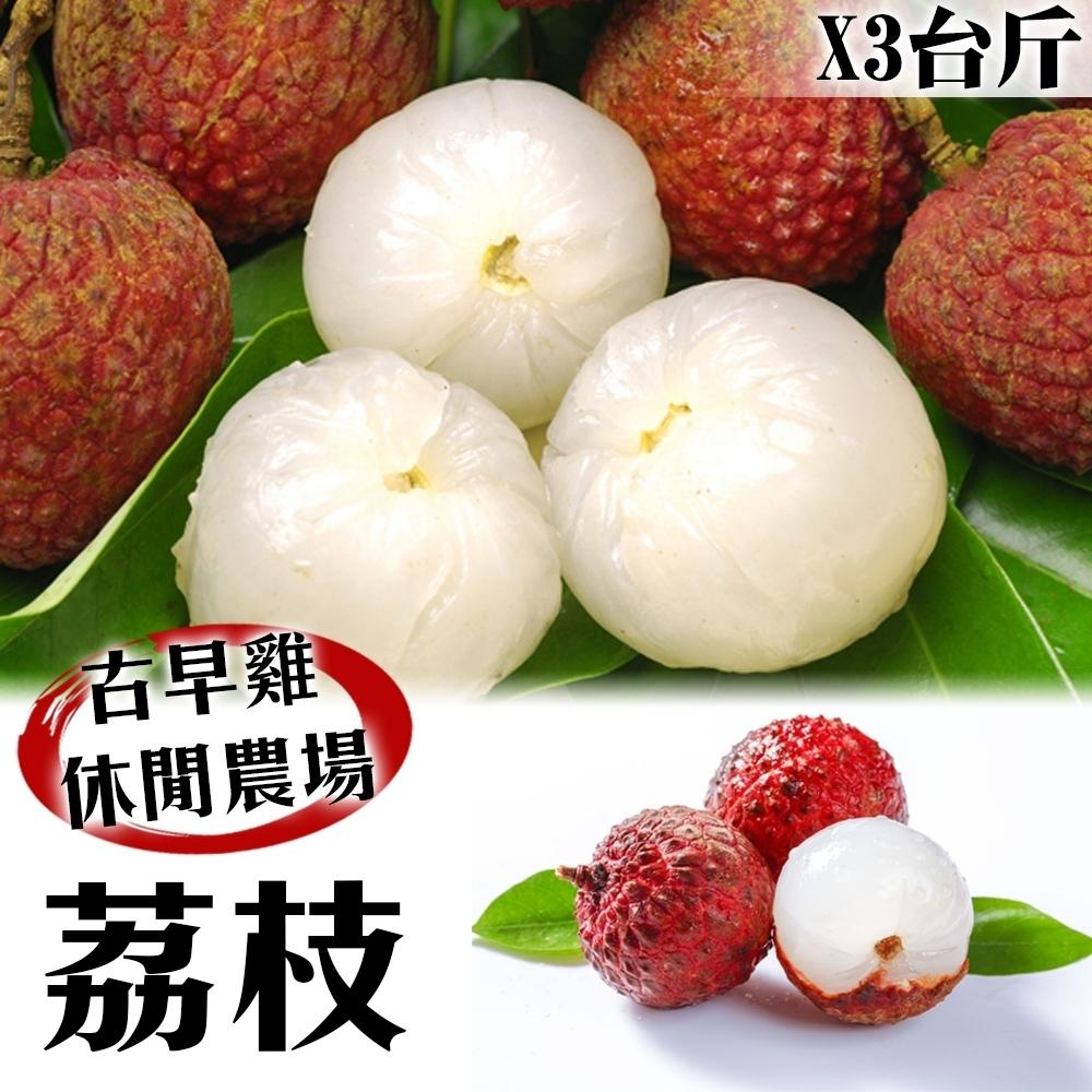 【農民直配】古早香黑葉荔枝(去枝去葉)3斤x1箱
