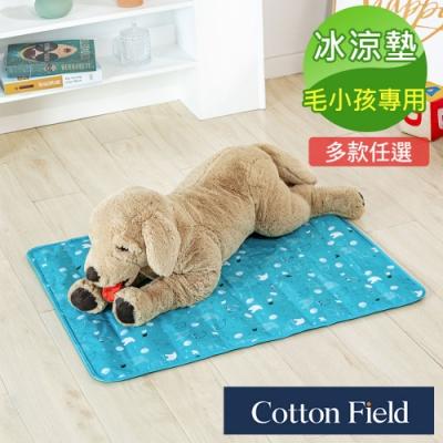 棉花田 冰雪天地 極致酷涼多功能寵物涼墊(61x76cm)