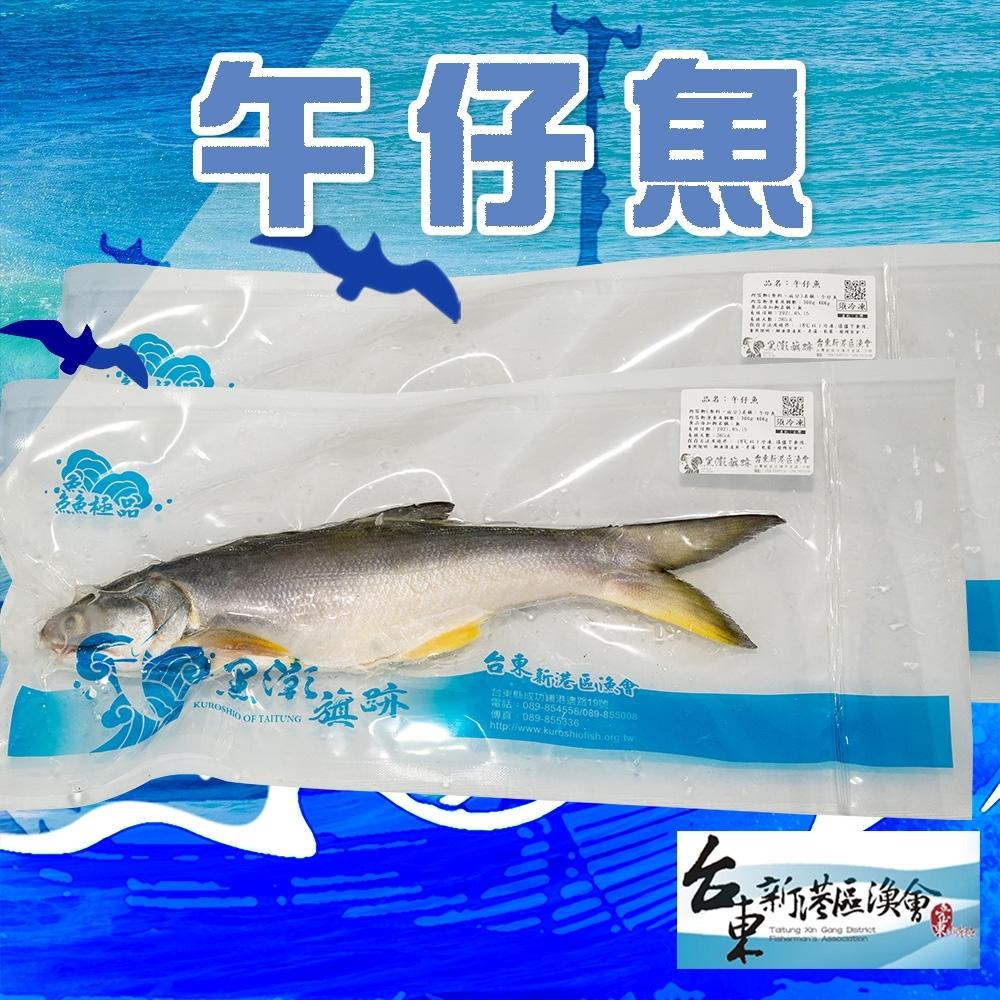 (任選) 新港漁會 午仔魚 (300g / 包)