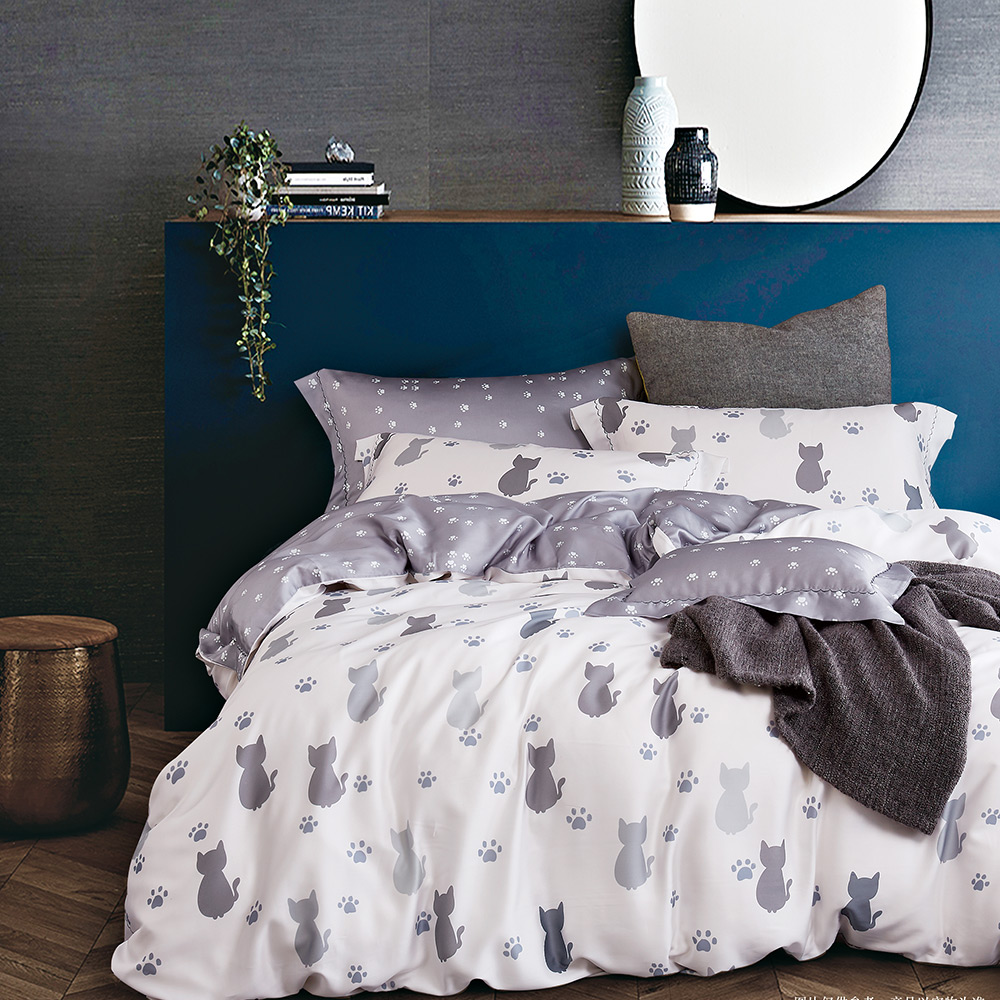 岱思夢 雙人100%天絲床包枕套三件組 仰星星