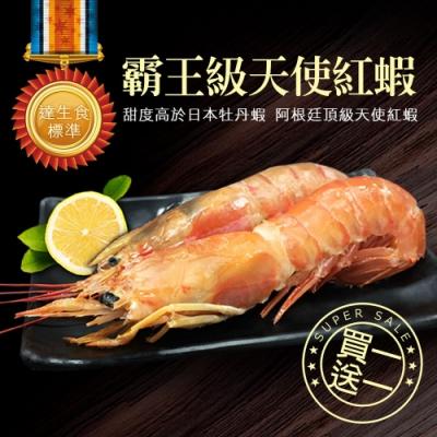 築地一番鮮-【買1送1】刺身用頂級XL巨無霸天使紅蝦1kg(加贈1kg共2kg)