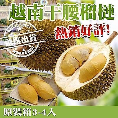 【天天果園】越南榴槤原裝12kg(約3-4顆)