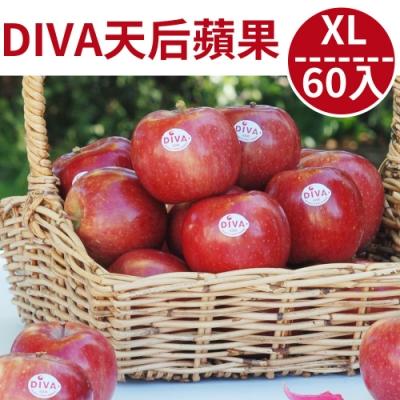 [甜露露]紐西蘭天后DIVA蘋果2XL 60顆入原裝箱(18kg)