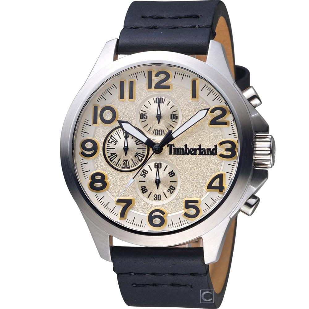 Timberland 極地探險 時尚腕錶(TBL.15026JS/07)46mm