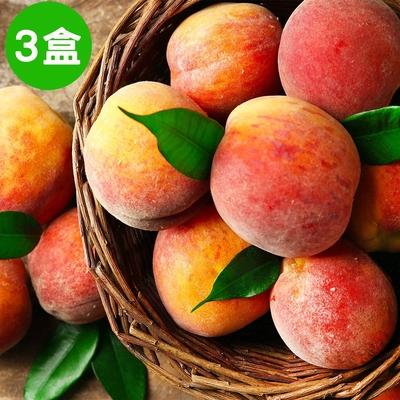 復興區農會輔導 拉拉山白鳳水蜜桃約2斤~2斤3兩裝 (6顆)/盒X3盒  (水蜜桃預購)